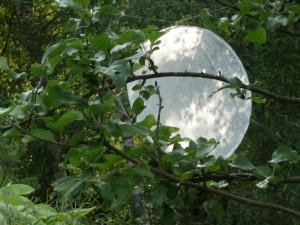 cirkelinst.3 (Kopia)